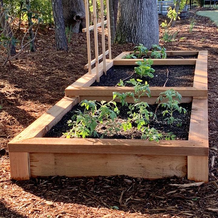 DIY a Raised Bed Vegetable Garden